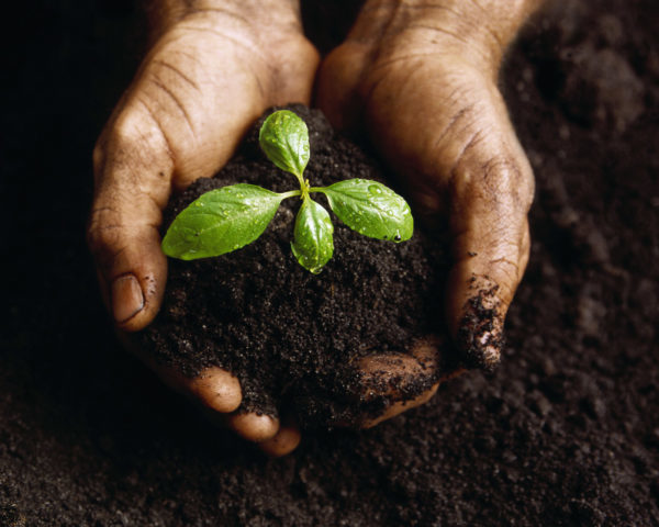 faire du compost pour réduire nos déchets