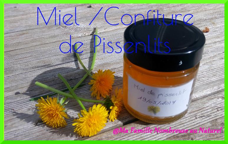recette miel de pissenlits ou cramaillote