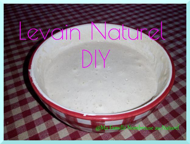 levain naturel / levain bio / diy / tuto