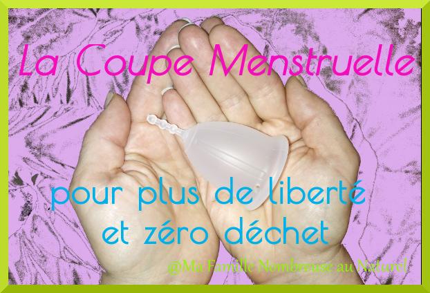 coupe menstruelle ou cup zéro déchet