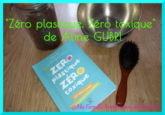 """livre """"zéro plastique, zéro toxique"""" de aline GUBRI"""